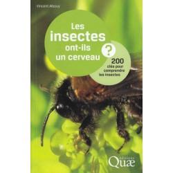 Les insectes ont-ils un cerveau ? - Vincent Albouy